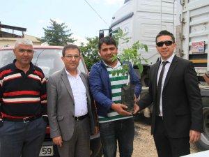 Beypazarı'nda 4200 Ceviz fidanı 60 yetiştirciye teslim edildi