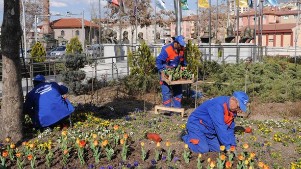 50 bin çiçekle kış hazırlığı