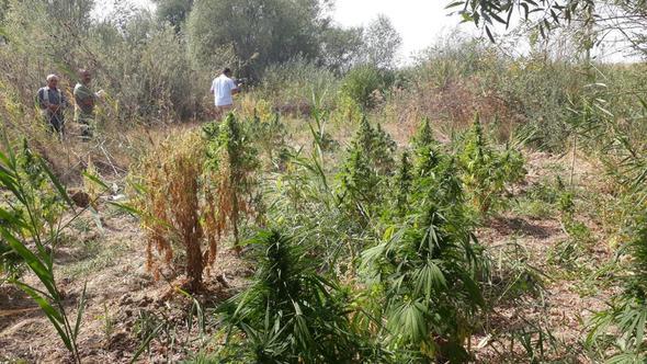 Uyuşturucuya 'Kararlılık' operasyonu