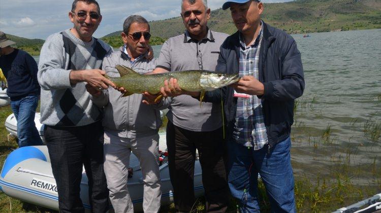 Ayaş'ta balık tutma yarışması